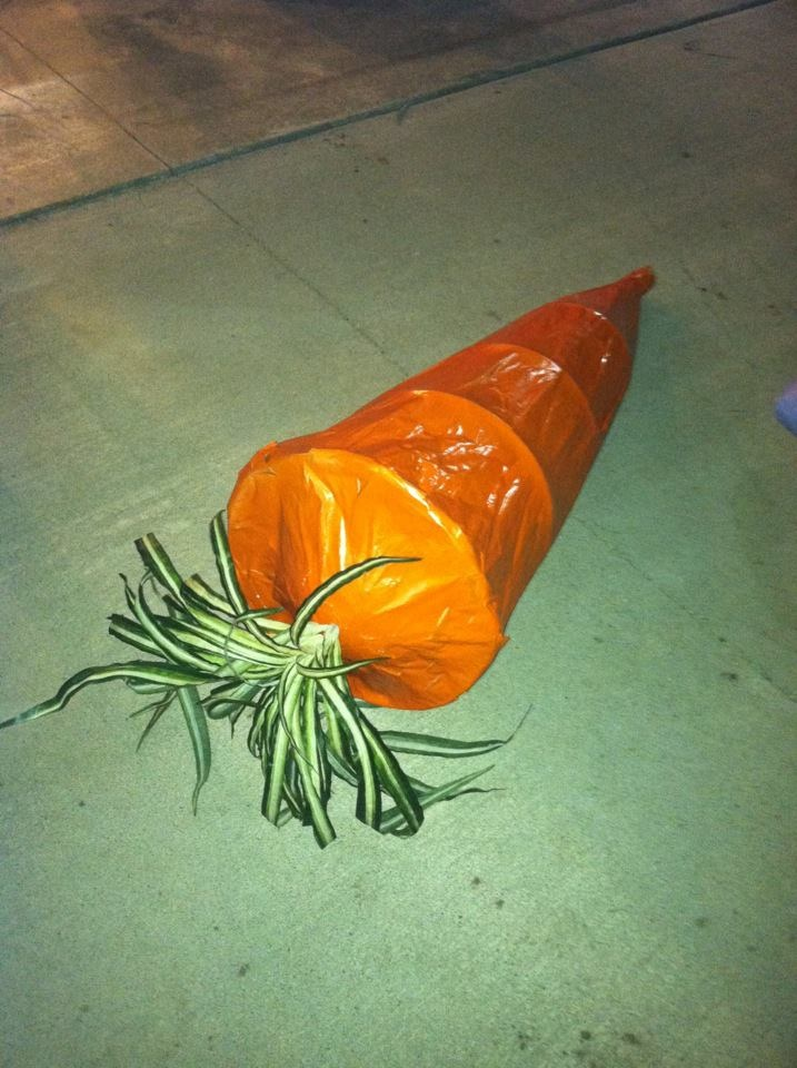 The carrot I made out of a tomato cage.