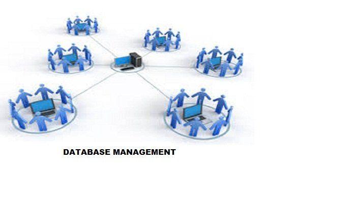 Remote DBA Experts: WordPress Database Management without  DBA