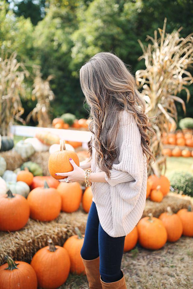 it's pumpkin patch season, y'all!