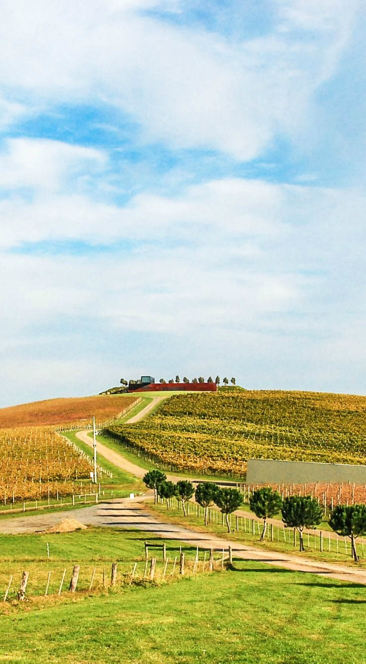 If you are looking for amazing landscapes, beautiful countryside and endless vineyards, then Yarra valley in Victoria is the place to go. It's my heaven:-)