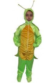 Ağustos Böceği Kostümü Çocuk