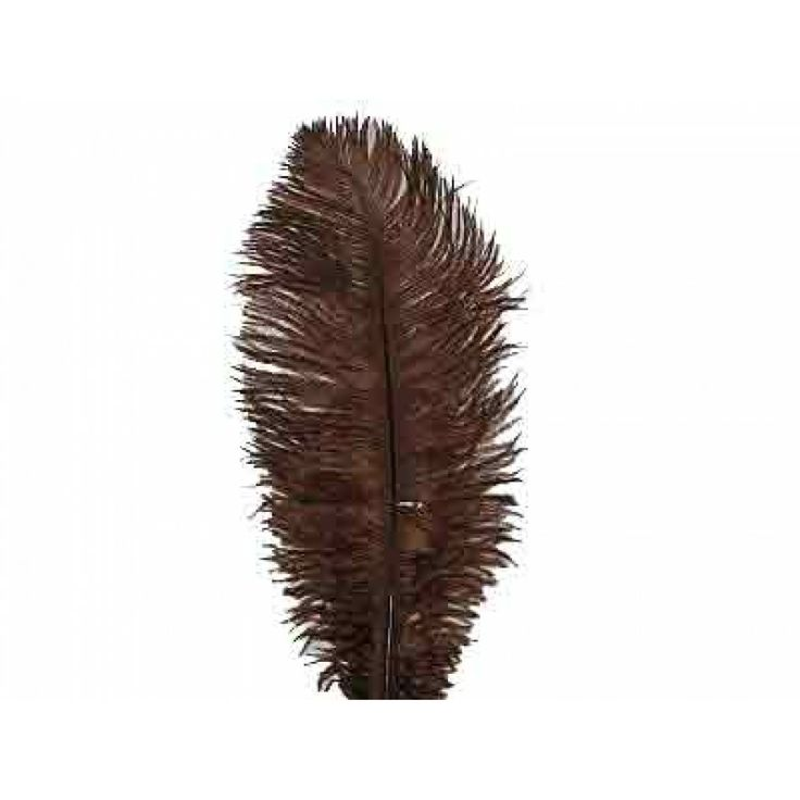 13-17 Ostrich Drabs BULK - CHOCOLATE BROWN (200 - 250 Feathers) [13-17 Ostrich Drabs Brown Sale]