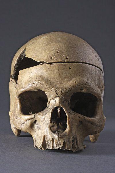Rare and Interesting Ancient Prehistoric 'Classic' Neanderthal Human Skull (80 BC to 35 European)