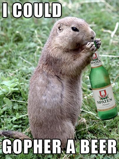 I could gopher THAT beer. I recall it being quite tasty brand...