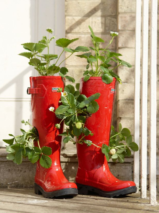 Designer MacGyver: New Crafts to Revive Old Shoes (http://blog.hgtv.com/design/2014/02/17/old-shoe-crafts/?soc=pinterest)Gardens Ideas, Rainboots Planters, Crafts Ideas, Cowboy Boots, Container Gardens Rain Boots, You, New Crafts, Baby Shoes,  Flowerpot