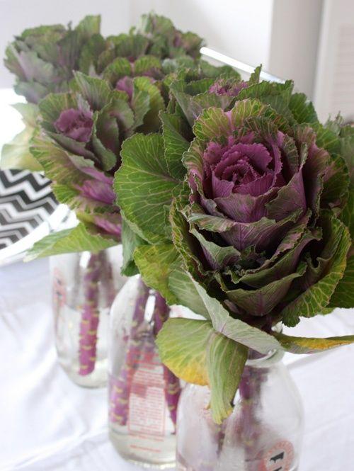Best wedding inspiration brassica images on pinterest