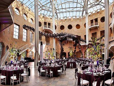 Fernbank Museum Of Natural History Atlanta Wedding Venues 30307 Clifton Rd