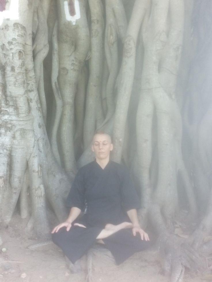 MP3 gratuits à télécharger de méditation zen guidée et des kusen ( explications pour la pratique du zazen, méditation). Par Kankyo, nonne bouddhiste de la tradition zen.