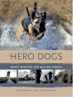 1000+ images about Hero Dogs on Pinterest   War dogs, Military working dogs and Military dogs