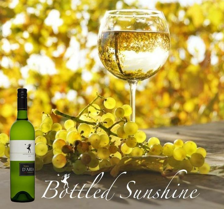 Make any day memorable with our Songbird Sauvignon Blanc. A truly special wine. Find out more about this award winner. http://ow.ly/s4S3M http://www.dariawinery.co.za