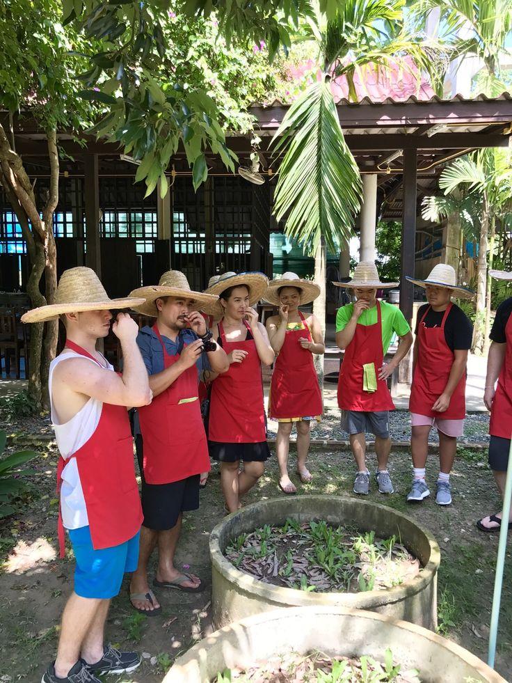 Thai Organic Cooking Class, a must do when in Chiang Mai, Thailand