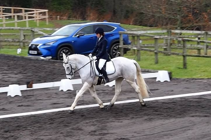 Welcome to Inside Track Eventing! I'm Natalie, an ambitious amateur rider just starting out in the wonderful world of Irish eventing. This post gives a little insight into who I am & what I'm about!