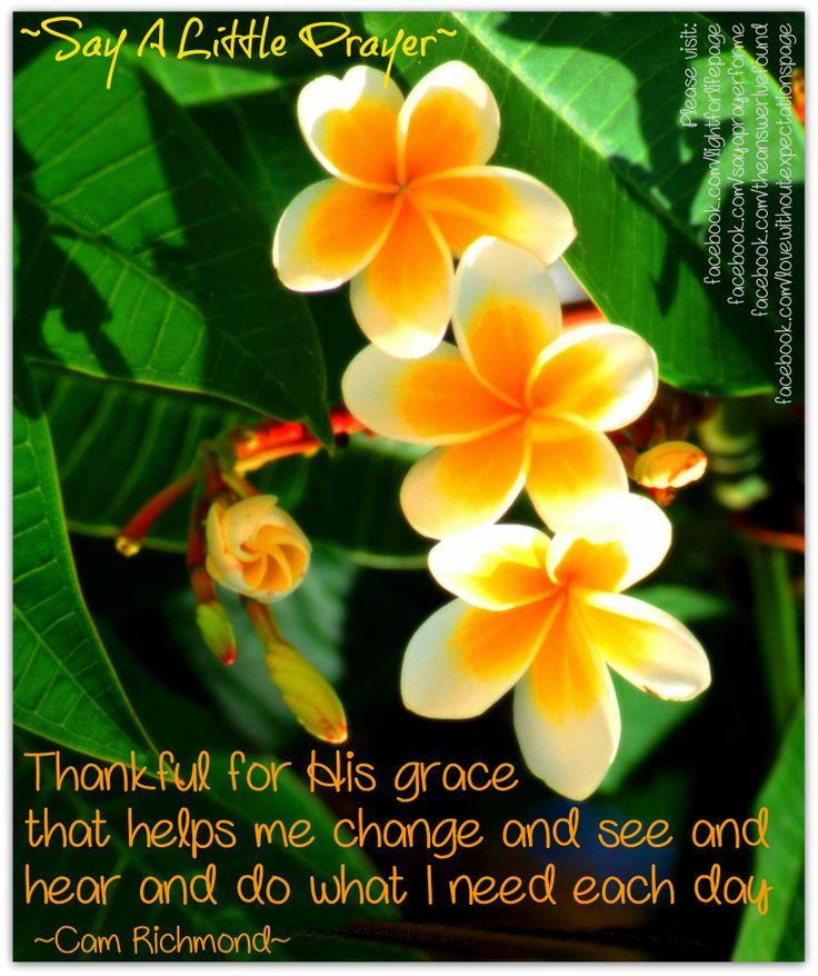 Thankful for His Grace... ~Cam Richmond~ More at: https://www.facebook.com/sayaprayerforme http://lightforlifewordpress.wordpress.com/