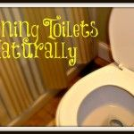 Cleaning Your Toilet Naturally
