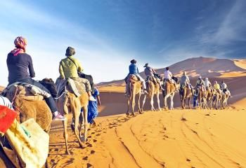 #LuxuryTripMorocco will keep you engaged with a variety of activities such as archaeological and historical exploration, camel trekking etc. Come and enjoy the tour. Check out more @ http://www.camelsafaries.net