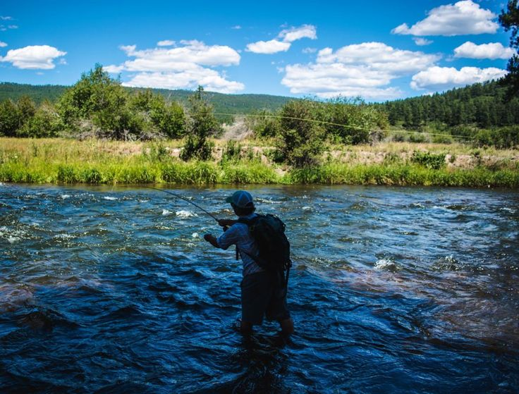 17 best images about southwest colorado on pinterest for Aspen fly fishing
