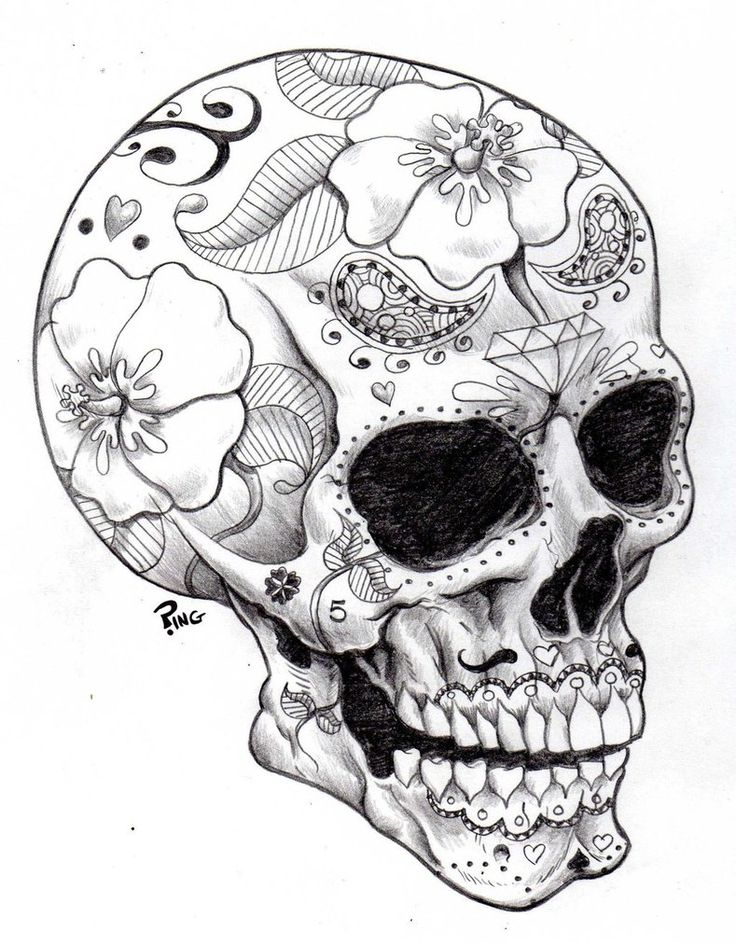 702 best skulls images on Pinterest  Drawings Skull art and