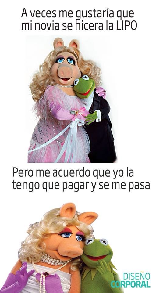 Meme rana Rene
