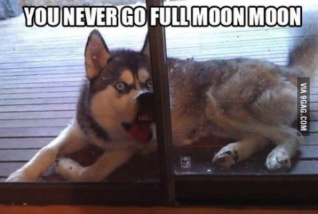 Hahaha #moonmoon #tropicthunder oh @Fellow Fellow Williams My moon moon