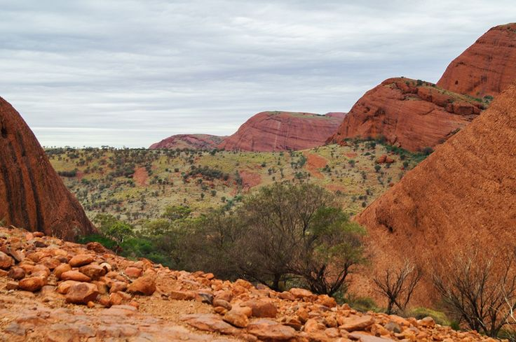 One of the many views of the Olgas