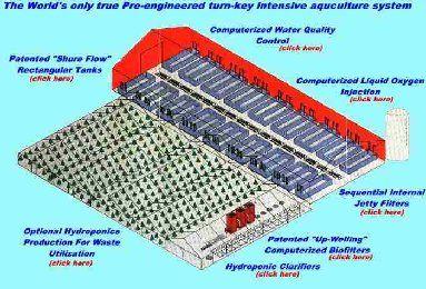 Aquaponics Training Curriculum for Portable Farms®