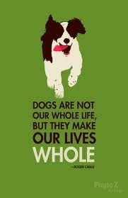 dogs life love