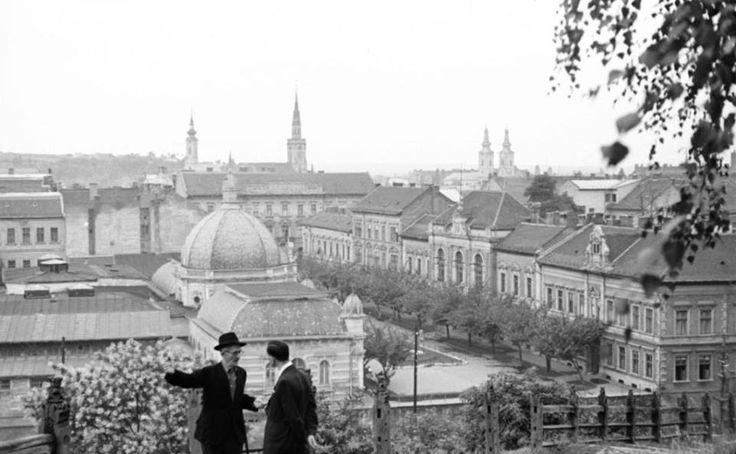 Erzsébet tér az Avasról