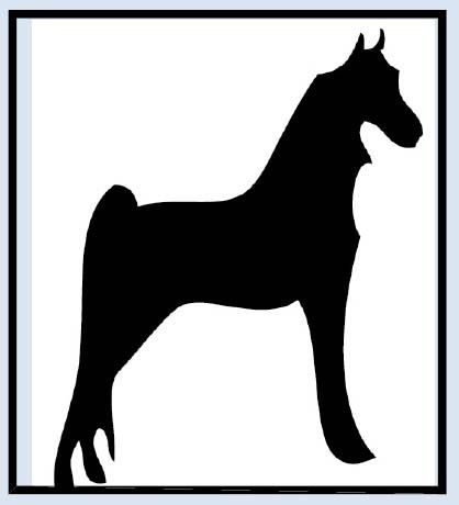 Horse Show Central ad logo for upcoming show – Saddleseat & Western League of Greater Los Angeles, Feb 2, CA