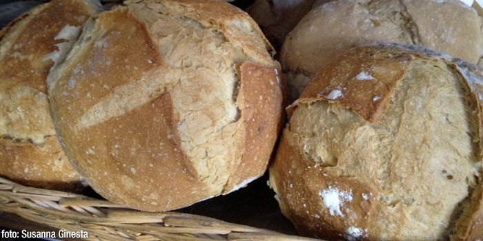 Ruta del pa al Lluçanès - The route of the bread at the Lluçanès region takes you to the heart and soul of artisan breadmaking. Learn all the secrets of this ancient tradition and experience this freshly baked delicacy #bcnmoltmes #bread #artisan #osona #lluçanes