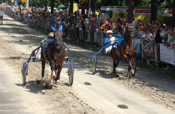 #TVV2025 Jaarlijkse kortebaandraverij tijdens de Paardemarkt van Voorschoten