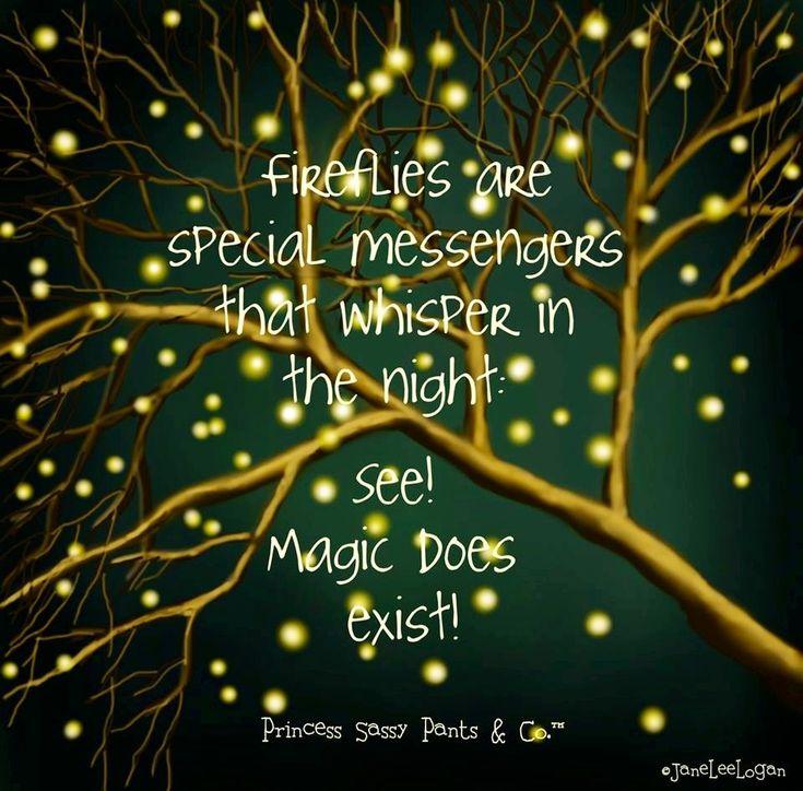 236 best fireflies images on pinterest artwork display canon fireflies and magic quote via facebookprincesssassypantsco fandeluxe Document