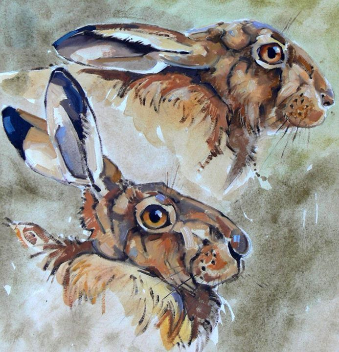 Studies of a Hare by Andrew Haslen