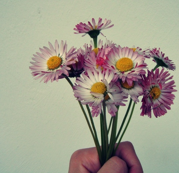 Kwiatki na Dzień Matki! :) Wszystkim Mamom najlepsze życzenia ślą Promocyjni.pl!