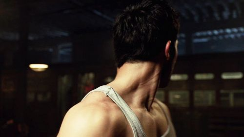 I think Tyler Hoechlin's muscular neck needs to be celebrated. Yes.