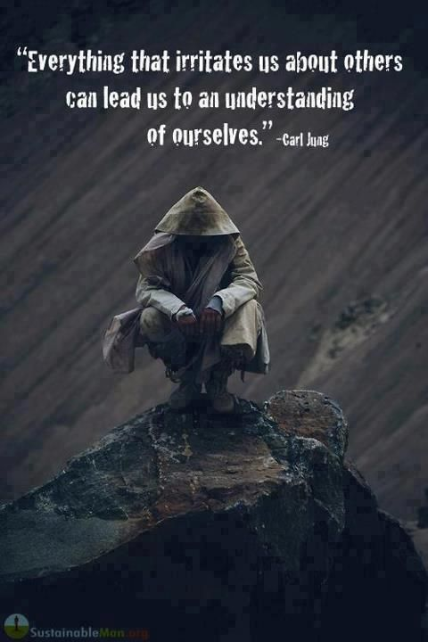 """""""Everything that irritates us about others can lead us to an understanding of ourselves."""" - Carl Jung"""