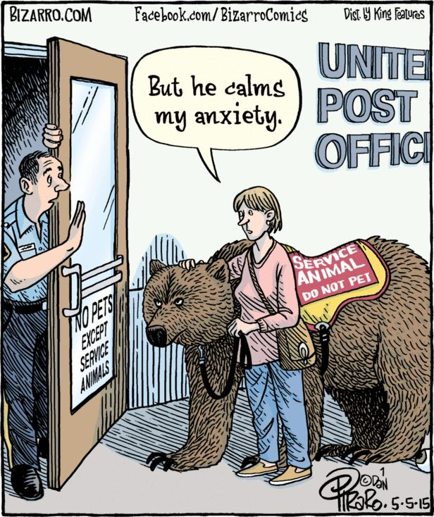 I need a Service Bear! May 5, 2015 | Bizarro! | .Bears and ...