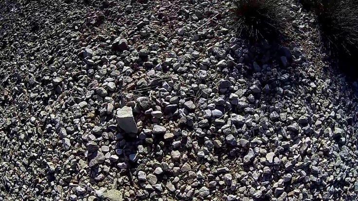 hod po kamenju na plazi...