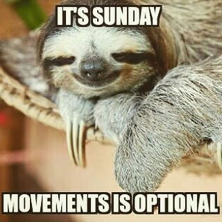 Image result for stay in bed on sunday meme