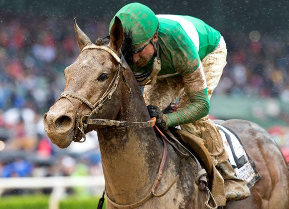 Exaggerator (Curlin), who has made a habit of impressive wins over off tracks, skipped over the sloppy going at Monmouth Park Sunday in a powerful last-to-first victory in the GI Betfair.com Haskell Invitational S.