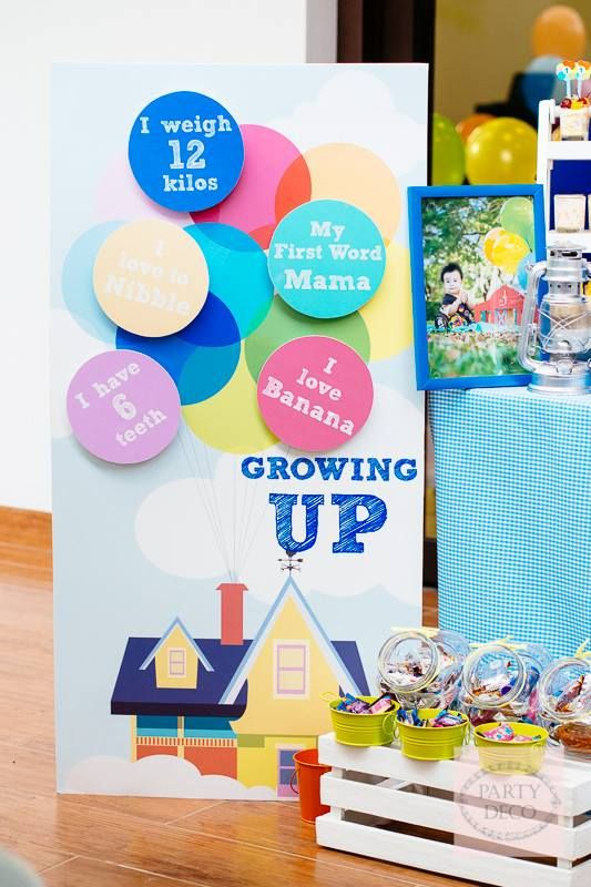 Disney's UP Themed Birthday Party - One Charming Day