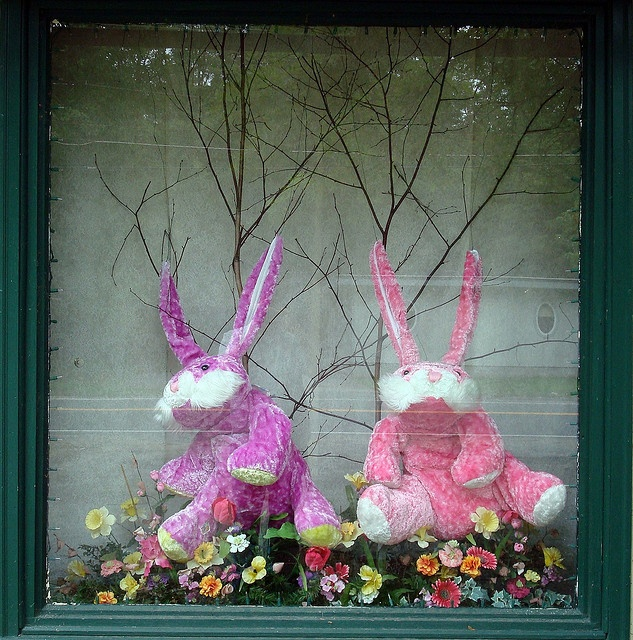 Easter Display Ideas: 21 Best Images About Easter Window Displays On Pinterest