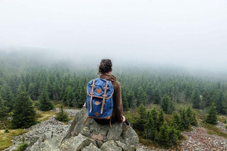 Wandern im Harz: Zur Wolfswarte bei Altenau