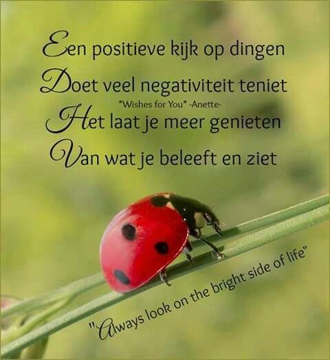 Een positieve kijk op dingen ...