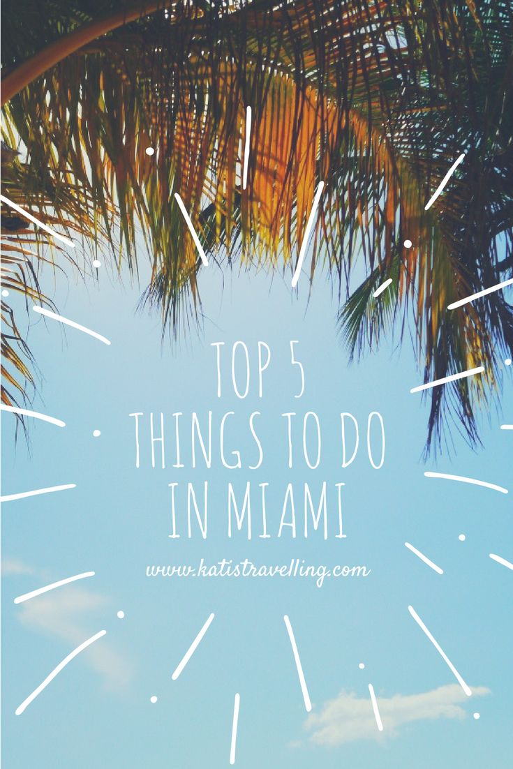 The 5 best things to do in Miami, Florida