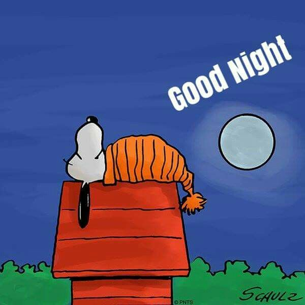 17 Best Images About Peanuts Gang Goodnight On Pinterest
