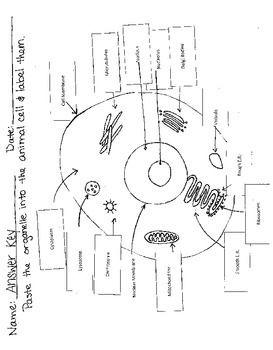 Pin on Science Teaching Ideas