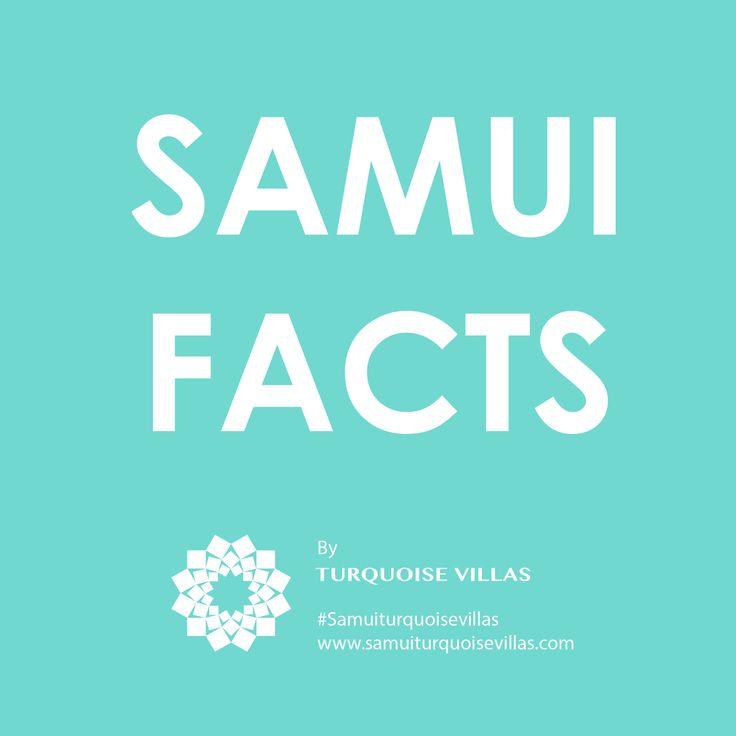 Interesting Facts about Koh Samui Island