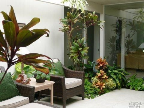 22 Best Images About Atrium Garden On Pinterest Gardens