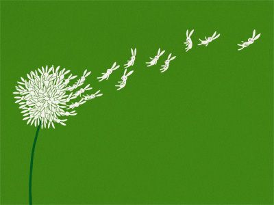 """Nature will show you the way"" - illustration by Lim Heng Swee [ dandelion + rabbits ]"