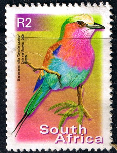 South Africa 2000 Birds R2 Fine Used SG 1224 Scott 1192 Other South African Stamps HERE
